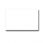 Plain White Two-Line Label (1000  Pcs)